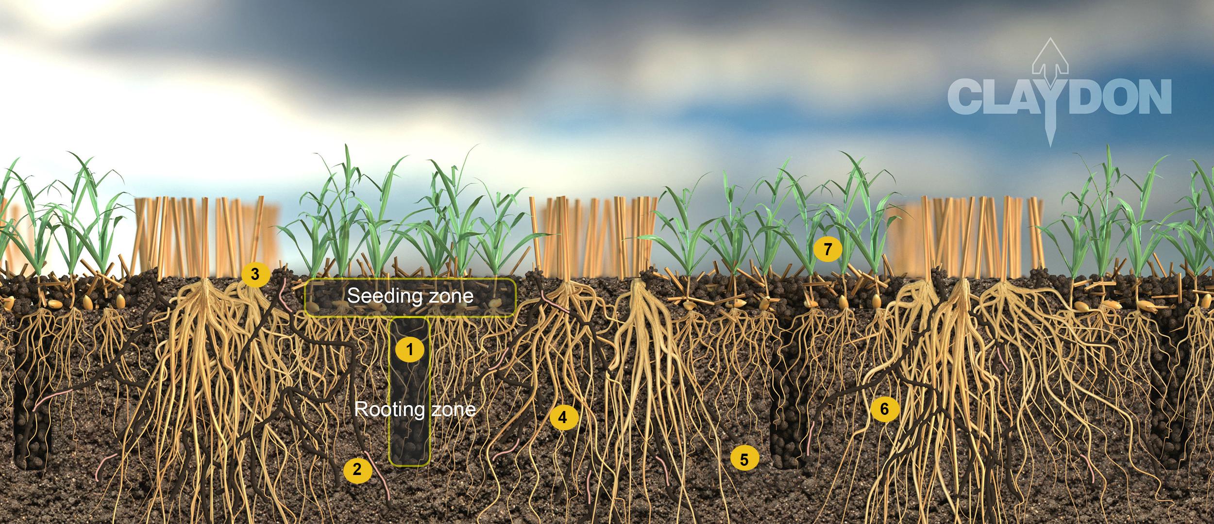 Claydon soil structure